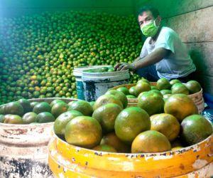 Tingkatkan Imun Tubuh, Penjualan Jeruk Kintamani di PIOS Meningkat